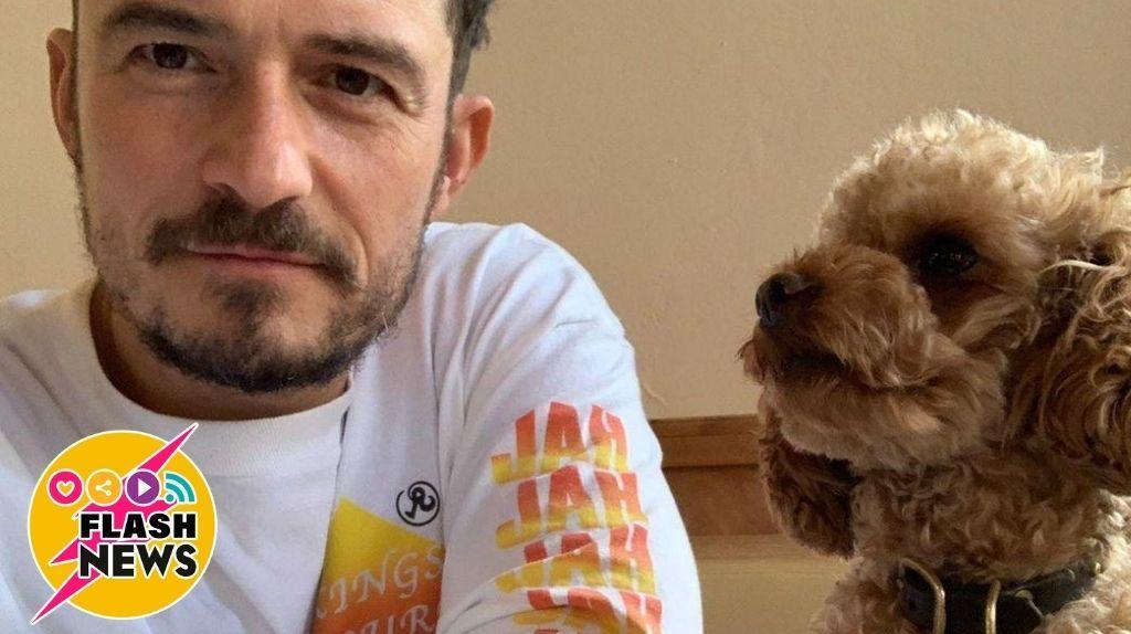 Orlando Bloom se despide de su perro.