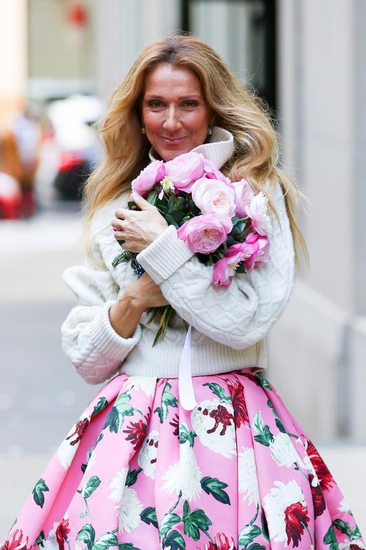 Celine Dion mamidura de gemelos a los 42 años.crush.news