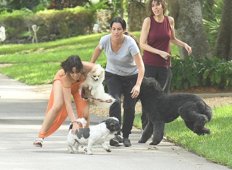 Camila Cabello con sus perros
