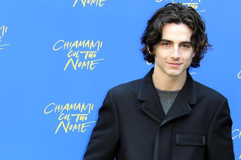 Timothèe Chalamet es el actor del momento
