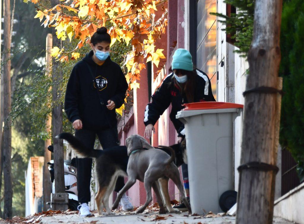 Aitana Ocaña separa a su perra Sopita de otro perro