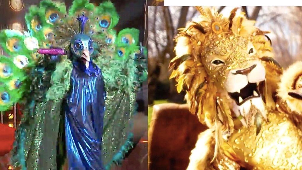 Segundo duelo, Pavo Real contra León, quien resultó ser la primera celebrity desenmascarada de Mask Singer