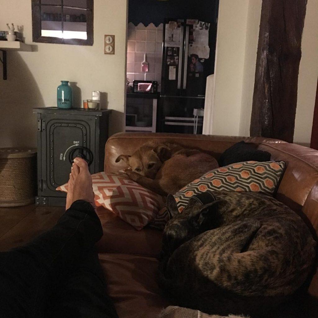 Cooper y Chunga, sus mascotas, otra de las pasiones de Marron