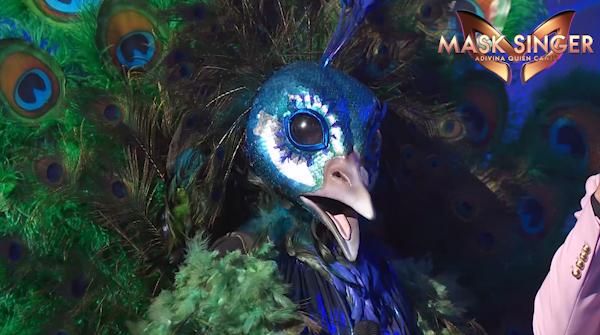 Pavo Real en la tercera gala de Mask Singer