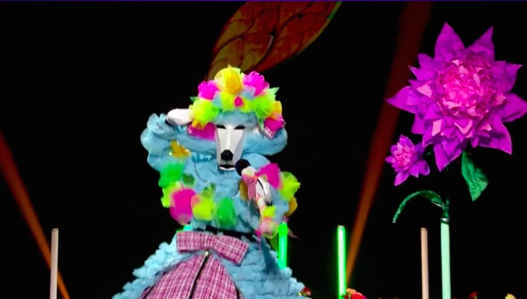 Caniche, en la final de Mask Singer