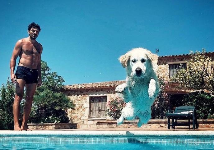 Herry el perro de Andrés Velencoso tiene cuenta Instagram con miles de seguidores