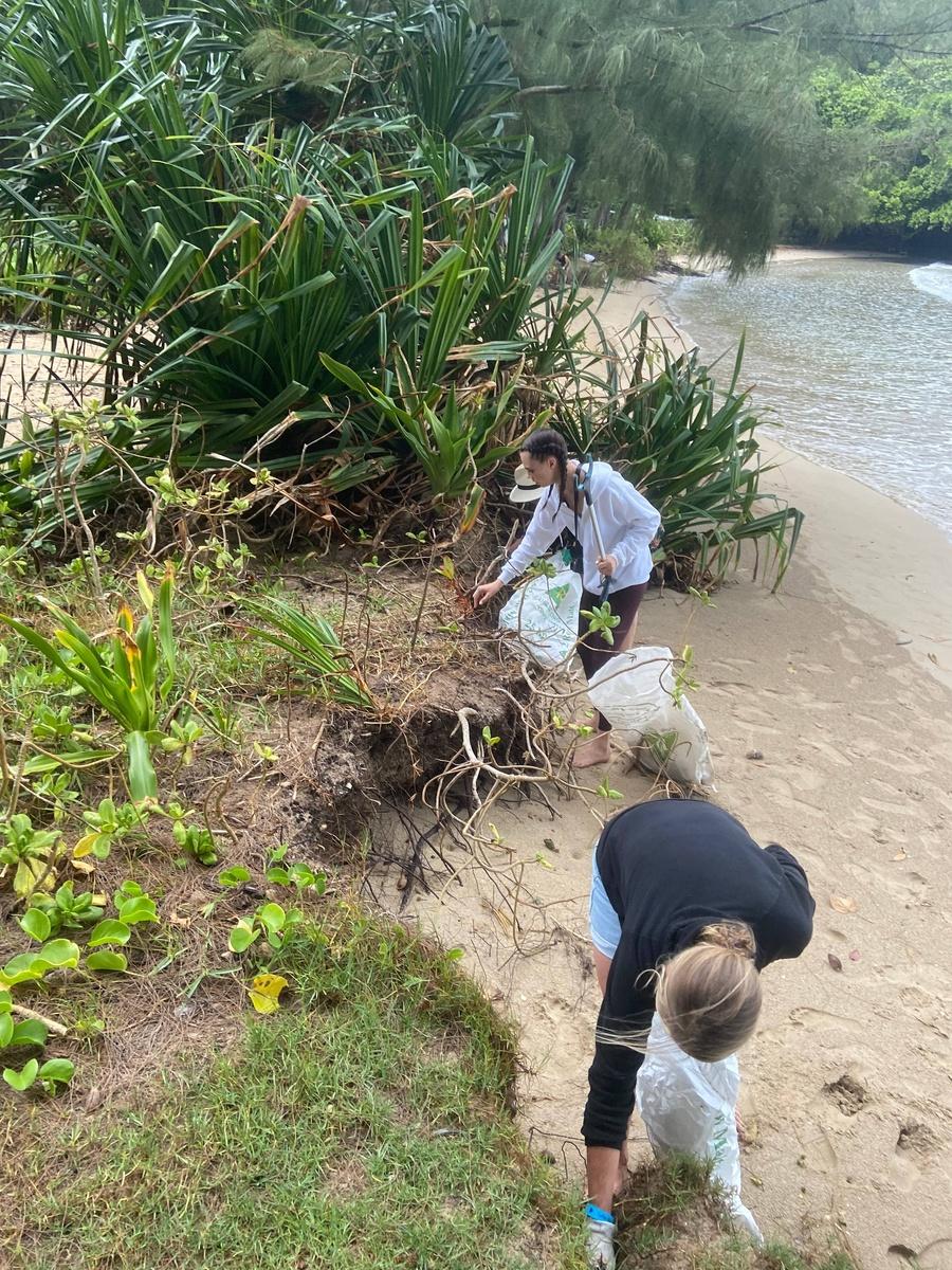 Cara Delevingne ayudando a limpiar la playa