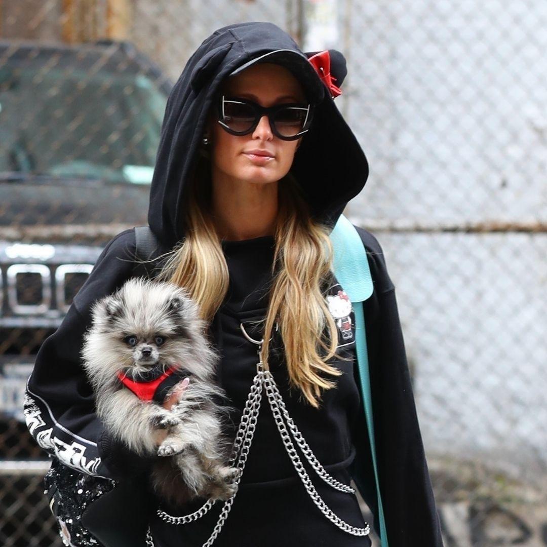 Paris Hilton con su perro