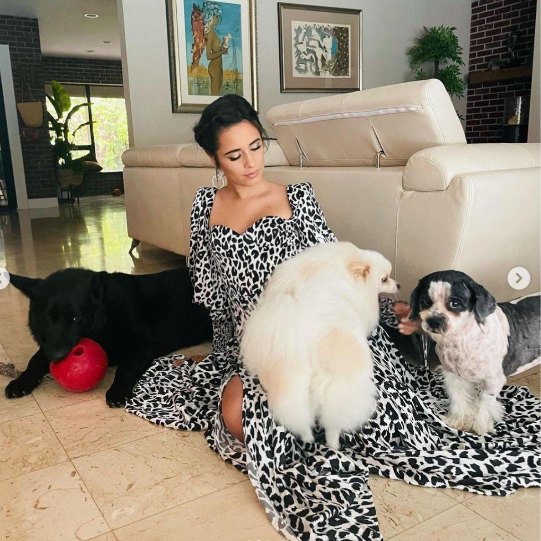 Camila Cabello y sus tres perros